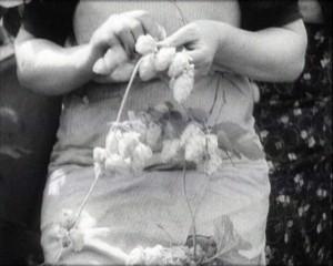 [Kent Hop Farming Part 1: Hop Picking] (1930s)