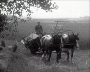 In England's Garden (1930s)