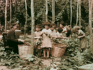 A colour still image showing two women and a group of children picking hops in a field in Kent