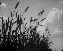 A still from In England's Garden (1930s)