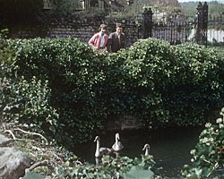 A still from Country Magazine (1959) showing a couple by a pond