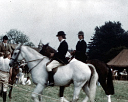 A still from [Washington & Steyning Horse Show] (ca.1968)