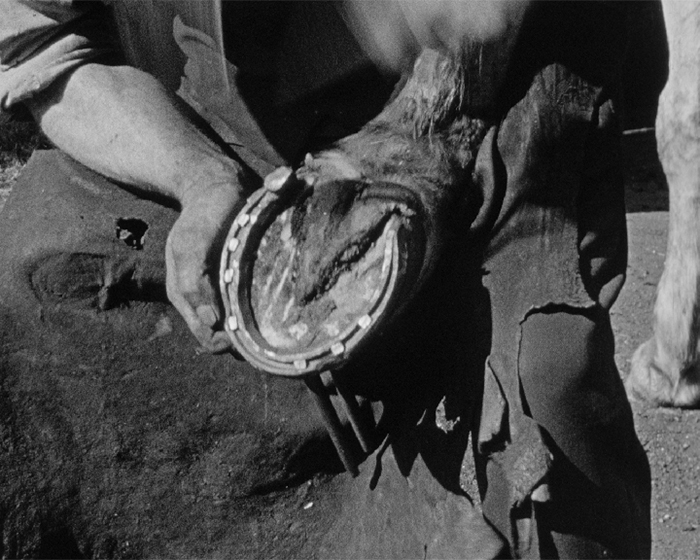 A still from 'About Horse Shoes' (1949)