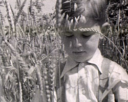 A still from [Portrait of a little boy] (ca.1940) showing a boy amongst wheat stalks