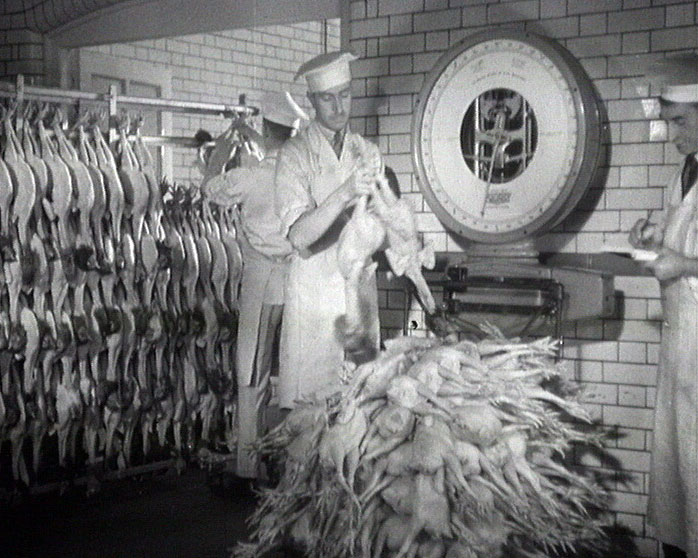 A still from 'Ancient and Modern' (1933) showing chickens being stacked in Shippam's factory
