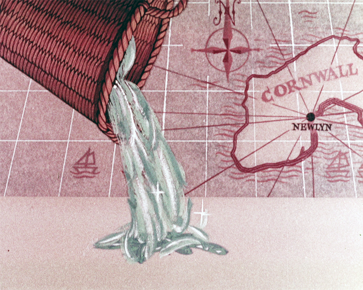 A still from Shippam\'92s Pilchards and Tomatoes (1950) showing a basket of fish being poured out onto a counter top in front of a line drawing of a map showing corneal and a compass marker pointing North. }