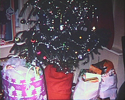 A still from [Family Yearbook] (ca.1972) - Christmas tree