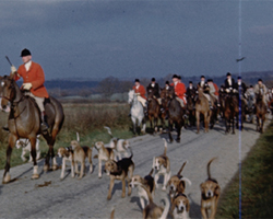 A still from 'Southdowns Foxhounds' (ca. 1946)