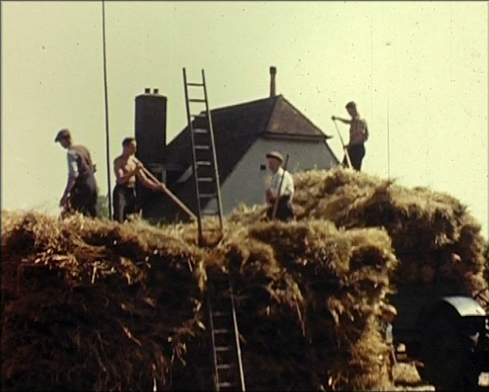 A Still from [The Seasons at Otford] (ca.1959)