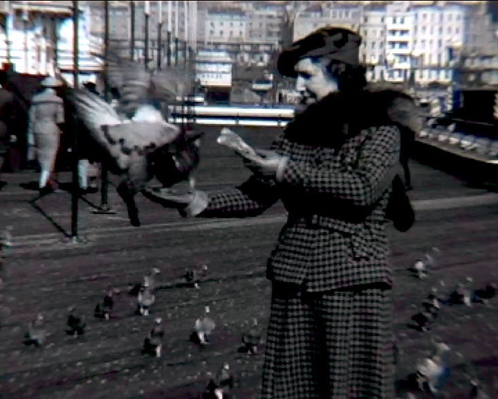A black and white still image taken from TID 7491, showing Mrs Lauste hand feeding a flock of pigeons on Brighton's West Pier. This action shot shows pigeons in mid air trying to land on her hand containing the food. Mrs Lauste is dressed in a two piece plaid suite and hat with a fox fur stole over one shoulder.