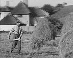A Still from [Hay Making; Royal Show] (1937)
