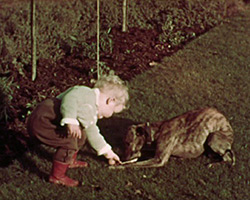 A still from [Toddler at the Farm] (1937)