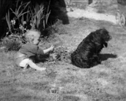a still from [Pets; Finglesham; Christmas] (1946)