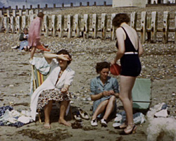 Lab [Beach; Lancing College; Countryside] [ca. 1938 - 1949?]